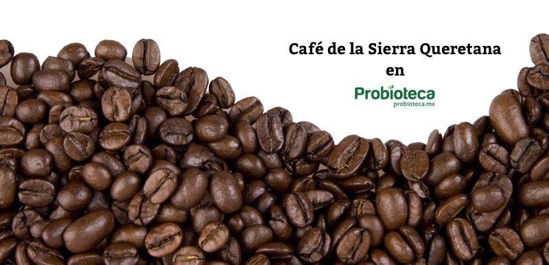 Cafe de la sierra Transparent