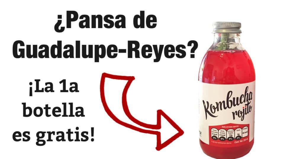 KombuchaFree1GuadalupeReyes